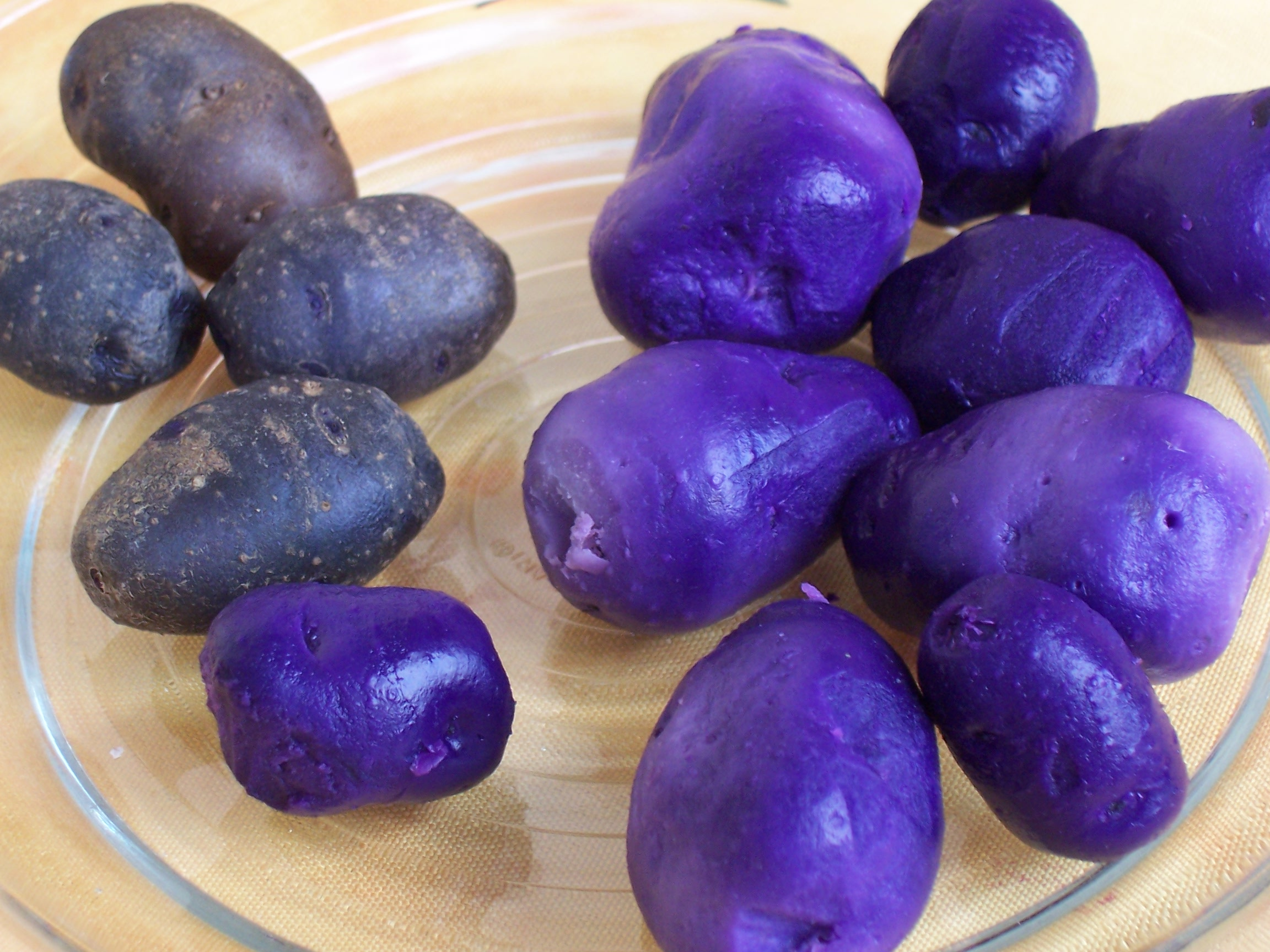 синеглазка картофель фото